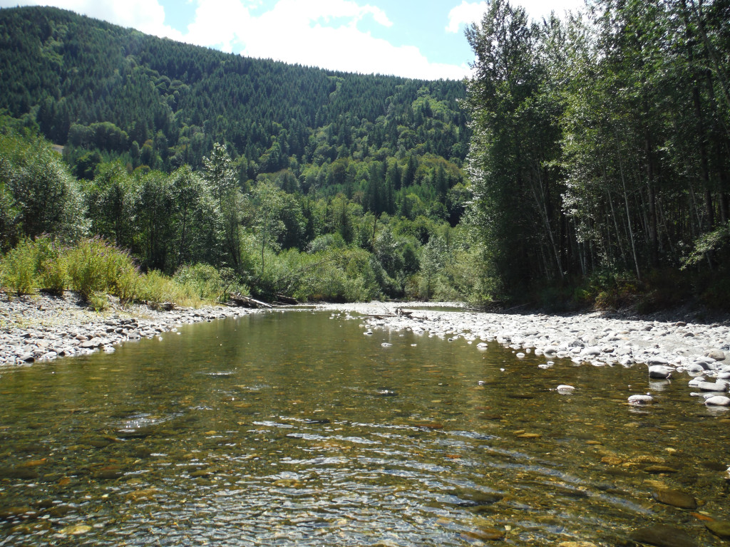Lower Finney Creek