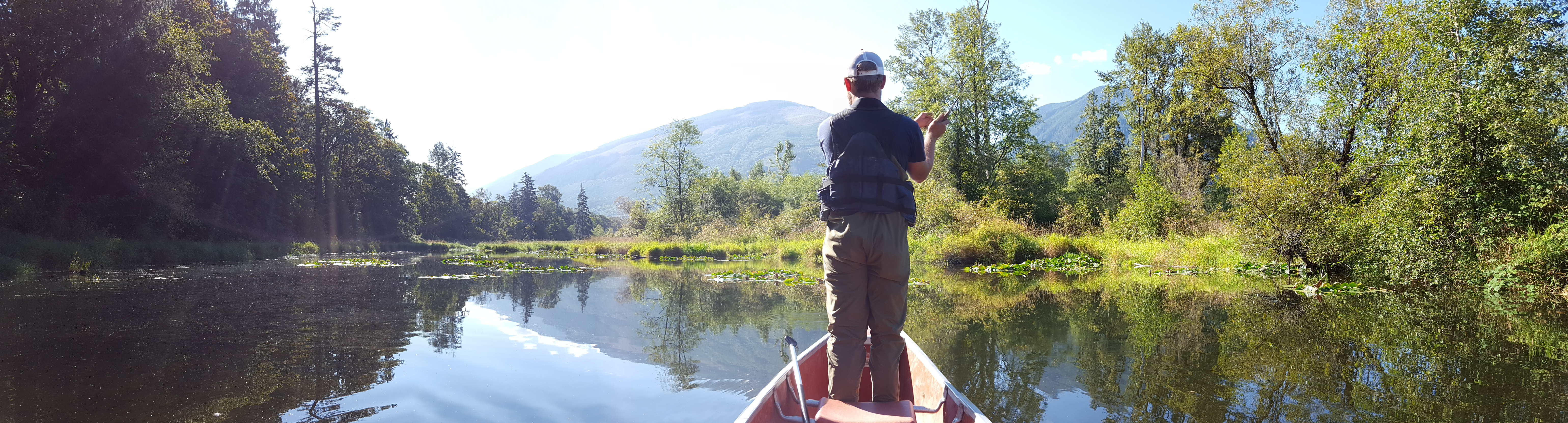 Fly fishing carey 39 s slough skagit fisheries enhancement for Skagit river fishing