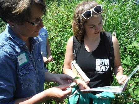 Sheila and Molly identifying a plant small file